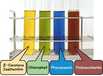 pigments spiruline